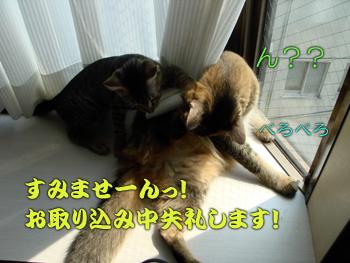DB_20070906_04.jpg