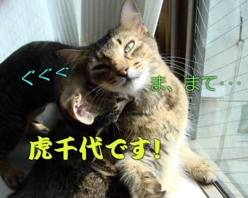 DB_20070906_06.jpg