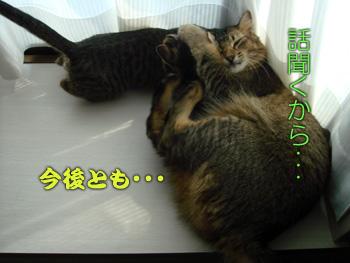 DB_20070906_07.jpg