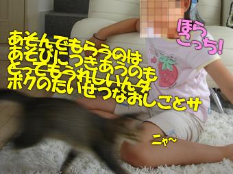 delilah_20060627_02.jpg