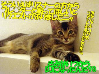 delilah_20060703_02.jpg