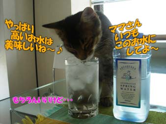 delilah_20060712_02.jpg