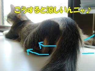delilah_20060717_04.jpg