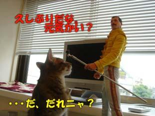 delilah_20060724_01.jpg