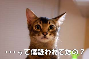 delilah_20060727_02.jpg