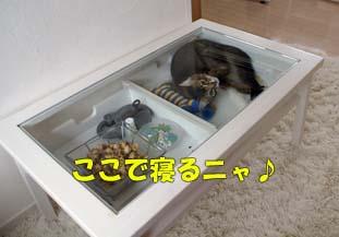 delilah_20060729_03.jpg