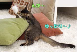 delilah_20060803_02.jpg