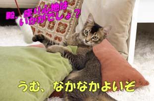 delilah_20060803_03.jpg