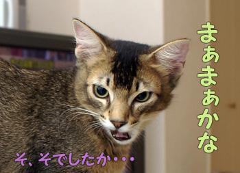 delilah_20060818_04.jpg