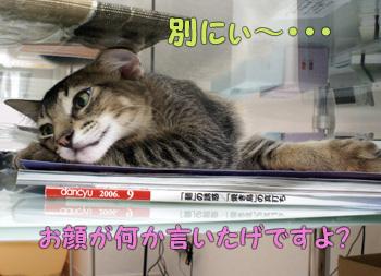 delilah_20060829_05.jpg