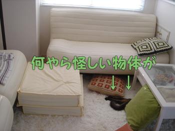 delilah_20060901_02.jpg