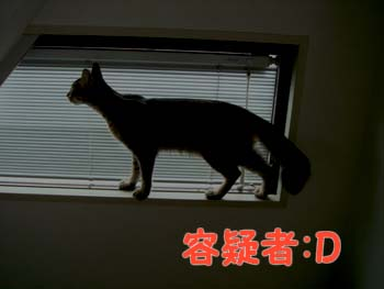 delilah_20060915_03.jpg