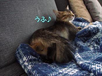 delilah_20061008_03.jpg