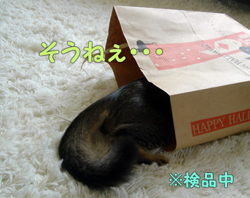 delilah_20061012_03.jpg