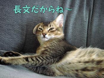 delilah_20061023_02.jpg