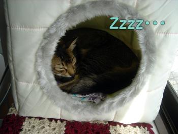 delilah_20061025_03.jpg