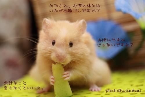 IMG_9771.jpg