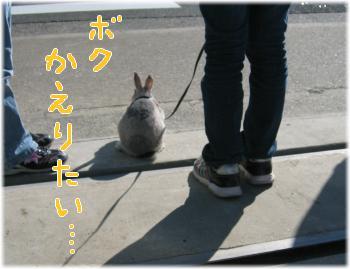 img_0920(2).jpg
