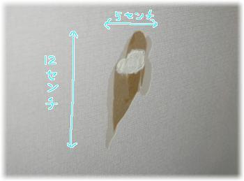 imgp9227(2).jpg