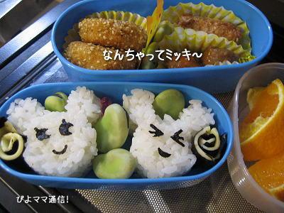 まとめお弁当3