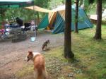 まあなんとかキャンプらしくなりました