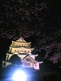 千葉城さくらまつり