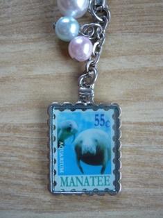 manatee_20101029182028.jpg