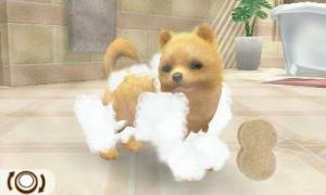 dogs014.jpg