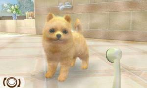 dogs015.jpg