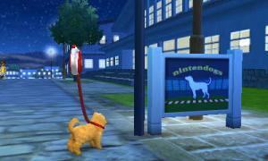 dogs029.jpg