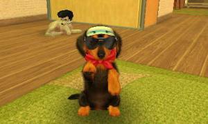 dogs0369.jpg