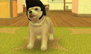 dogs0370.jpg