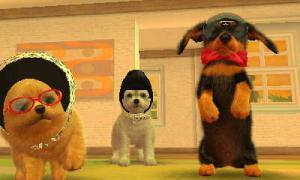 dogs0372.jpg