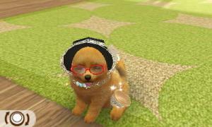 dogs0381.jpg