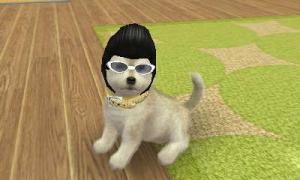 dogs0382.jpg