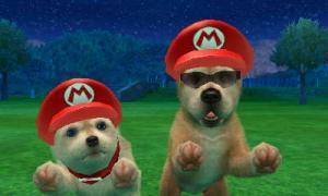 dogs0392.jpg