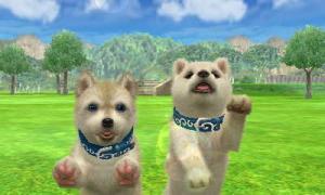 dogs0399.jpg