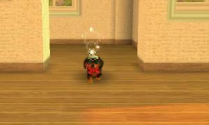 dogs0405.jpg