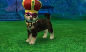 dogs0406.jpg