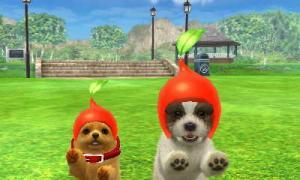 dogs0427.jpg