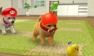dogs0428.jpg
