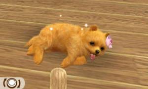 dogs042.jpg