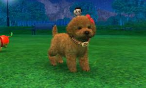 dogs0433.jpg