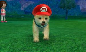 dogs0440.jpg