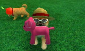 dogs0446.jpg