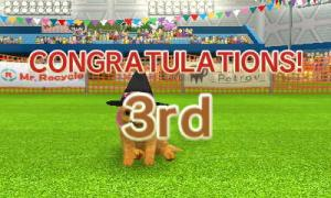 dogs129.jpg