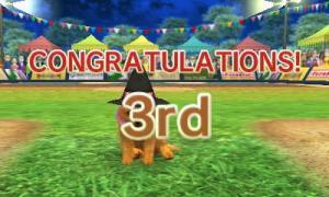 dogs136.jpg