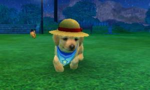 dogs143.jpg