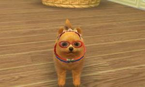 dogs148.jpg