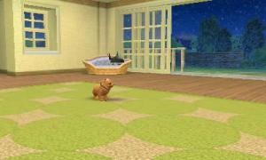 dogs149.jpg